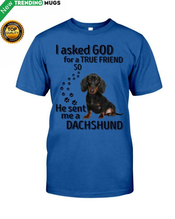 I Asked God For A True Friend So He Sent Me A Dachshund Shirt, Hoodie Apparel